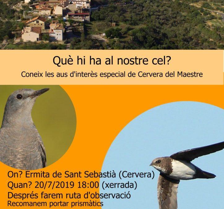cartell-activitat-birdwatching-baixa