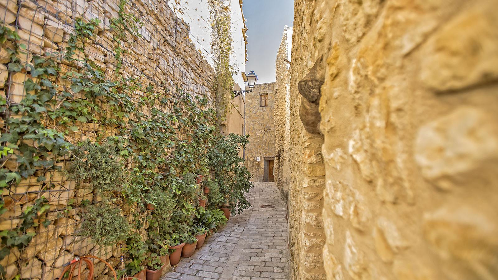 Ayuntamiento_Cervera_del_Maestre-casco-antiguo-calle-recorridos-virtuales