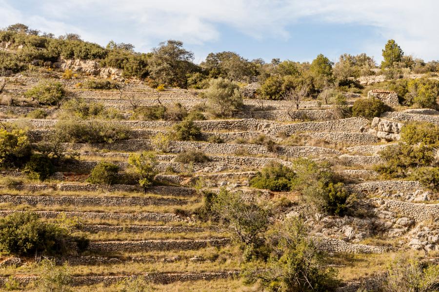 Piedra en seco Terrazas